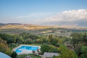הבריכה החיצונית צלם דרור מילר מלון כפר גלעדי